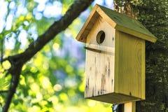 Birdhouse на березе Стоковые Изображения