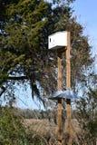 Birdhouse на поляке стоковое изображение