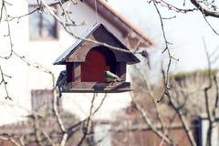 birdhouse осени выходит желтый цвет хворостин вала Стоковая Фотография RF