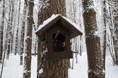Birdhouse предусматриванный в снеге прикрепленном в дерево стоковое фото rf