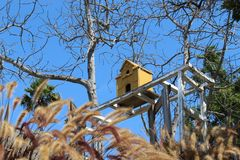 birdhouse Fotos de archivo