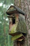 Birdhouse. Empty wood birdhouse in center of the forest royalty free stock photo