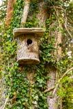 birdhouse image stock