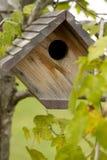 birdhouse Стоковое фото RF