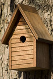 Birdhouse. With shingles stationed firmly on large tree Royalty Free Stock Images