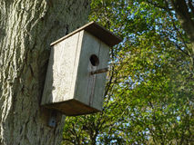 Birdhouse. On a tree Royalty Free Stock Image