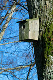 Birdhouse. Against blue spring sky Royalty Free Stock Images