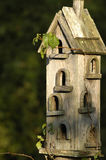Birdhouse. Antique birdhouse in the morning sun Royalty Free Stock Images