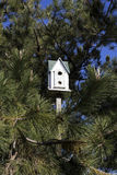 Birdhouse. Among the trees in New Jersey stock image