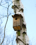 Birdhouse. In winter Royalty Free Stock Images