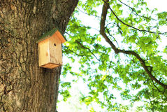 Birdhouse Obraz Stock