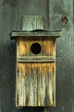 birdhouse Stock Foto's