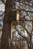 Birdhouse. Birdhousw in the winter forest Stock Image