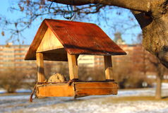 Birdhouse Obraz Royalty Free