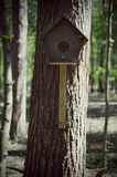 birdhouse Stock Foto
