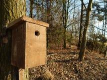 birdhouse Royalty-vrije Stock Afbeeldingen