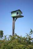Birdhouse Fotografie Stock