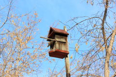 The birdhouse against the blue sky. Trees and blue sky. Winter landscape Royalty Free Stock Images
