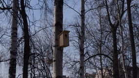 The birdhouse. Awaits the return of migratory birds from warm countries Stock Photo