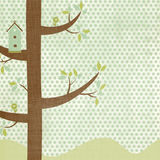 Birdhouse Background. Cute birdhouse and birds on a fun and trendy 12 x 12 square background Stock Photo