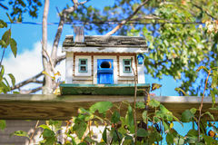 Birdhouse in the backyard home Royalty Free Stock Image