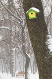 Birdhouse and bench in winter. Trees, snowfall royalty free stock photo