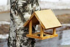 Birdhouse on birch tree. Nesting box on a tree in a park, spring. royalty free stock image
