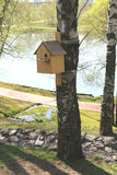 Birdhouse. The birdhouse on a birch tree in Tsaritsyno Park in Moscow, Russia Royalty Free Stock Image