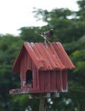 Birdhouse with bird Royalty Free Stock Photography