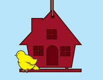 Birdhouse Bird Royalty Free Stock Photography