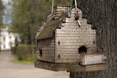 Birdhouse for  birds Royalty Free Stock Photography