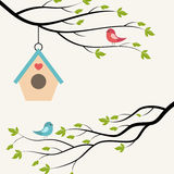 Birdhouse. Birds on branch of tree and birdhouse. Vector illustration on light background Royalty Free Stock Photos