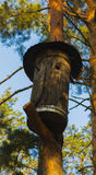 Birdhouse for birds on a high tree Stock Photo