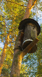 Birdhouse for birds on a high tree Royalty Free Stock Image