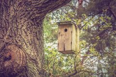 Birdhouse for birds on the tree Stock Photo