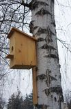 Birdhouse for birds. On the trunk of a birch in the park Royalty Free Stock Photos