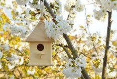 Birdhouse with blossom cherry flower stock photo