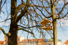 Birdhouse built of small birch logs hanging Royalty Free Stock Photos