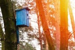 Birdhouse che appende sull'albero Fotografie Stock Libere da Diritti