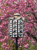 Birdhouse in the cherry tree Royalty Free Stock Photography