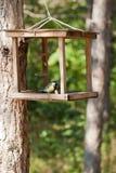 Birdhouse con el pájaro en parque de la ciudad fotos de archivo libres de regalías