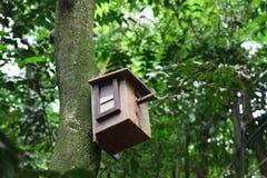 Birdhouse con l'uccello all'interno Immagini Stock Libere da Diritti