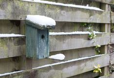 Birdhouse covert in snow. Hanging on a wooden fence Stock Photo