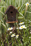 Birdhouse and Daisies Stock Photography