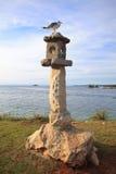 Birdhouse de pedra da gaivota Imagem de Stock