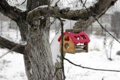 Birdhouse Dozownik dla ptaków na drzewie w zimie fotografia stock