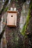 Birdhouse em uma árvore Imagens de Stock