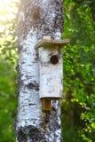 Birdhouse en árbol Fotos de archivo