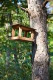 Birdhouse en árbol en parque de la ciudad fotos de archivo libres de regalías