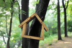 Birdhouse en bosque foto de archivo